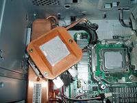 P8090016w300