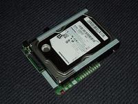P5290003w300