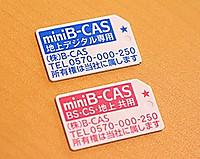 Minibcas